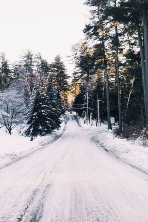beautiful, beautiful places, boho, dream, dreaming, fashion, forest, grunge, hippie, hipster, indie, landscape, natural, nature, place, snow, snowing, style, travel, travelling, tropical, tumblr, view, vintage, winter, world, vsco