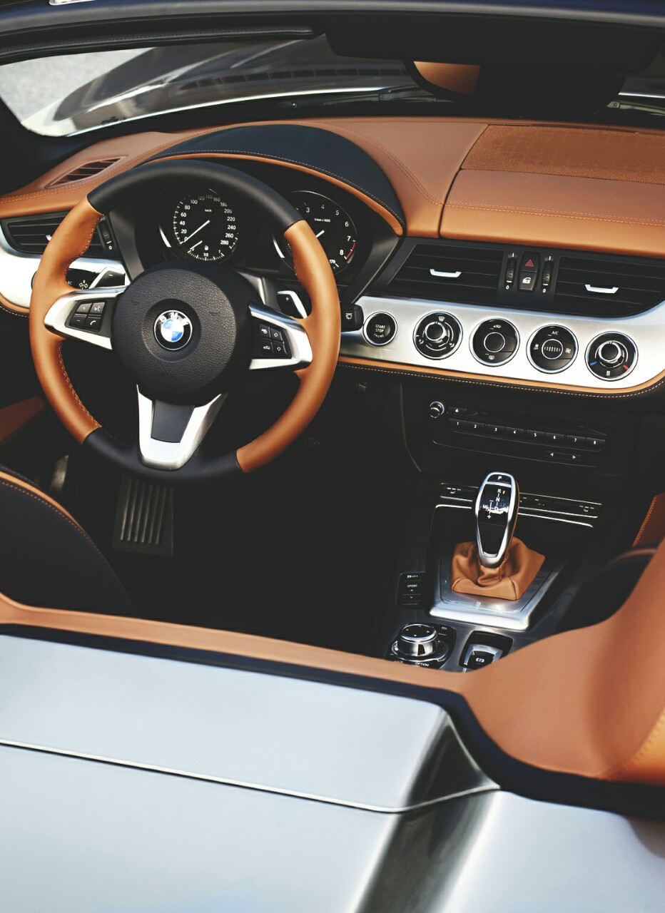 bmw, brown, car and classy