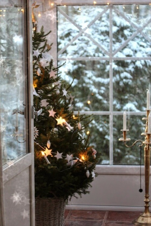 christmas, christmas lights, christmas tree, holidays, house decorating