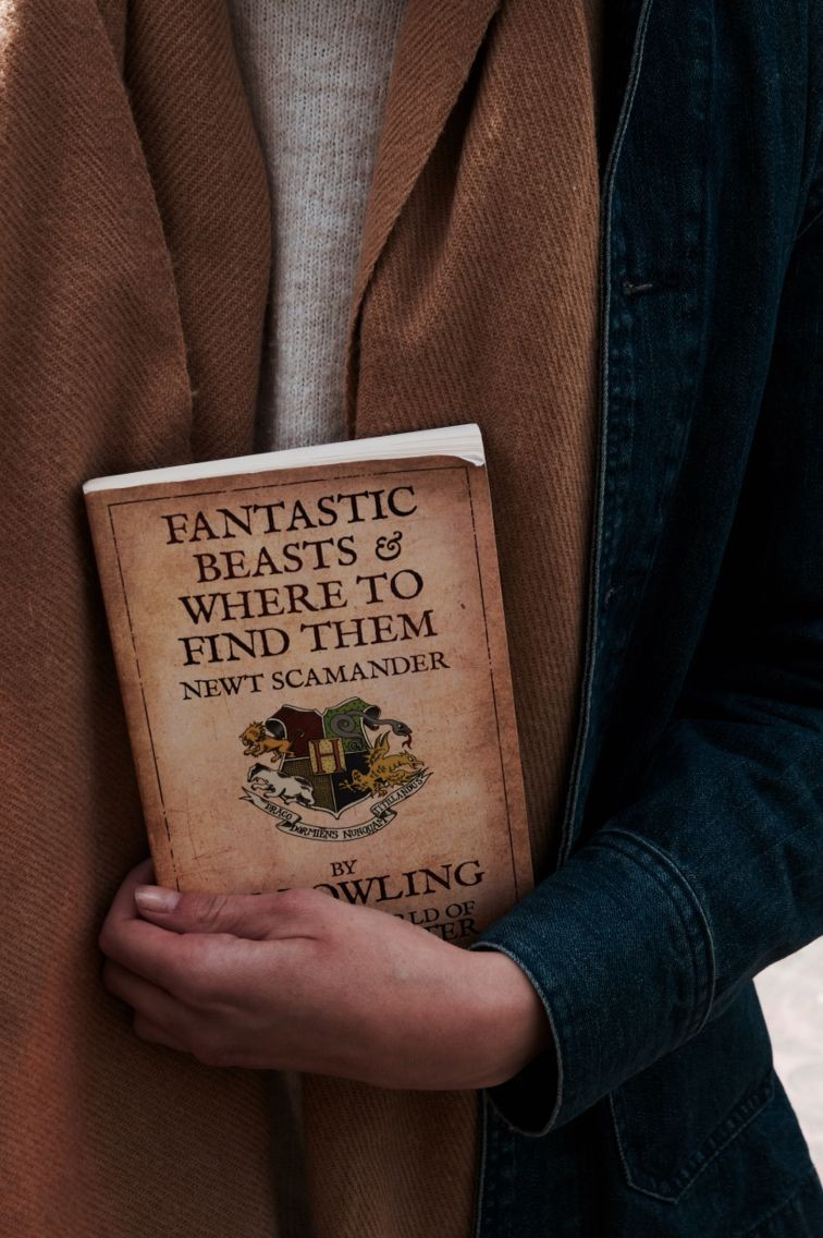 fantastic beasts, aesthetic, newt scamander and fbawtft