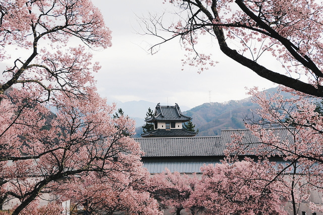 aesthetic, architecture, japan and old fashion