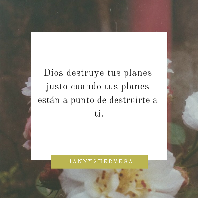 quote, amor, dios and salidas