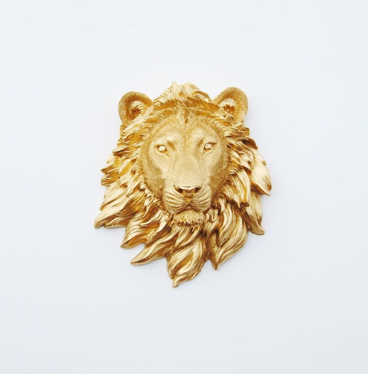 fancy, mane, gold and lion