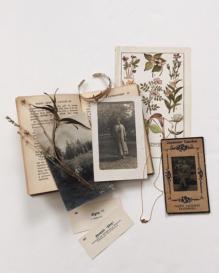 beige, books, leaves and soft grunge