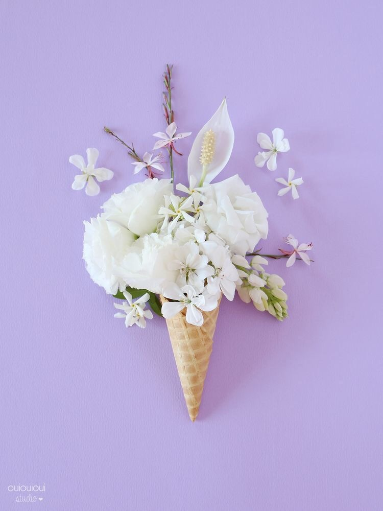 aesthetic, cone, flower and flower aesthetic