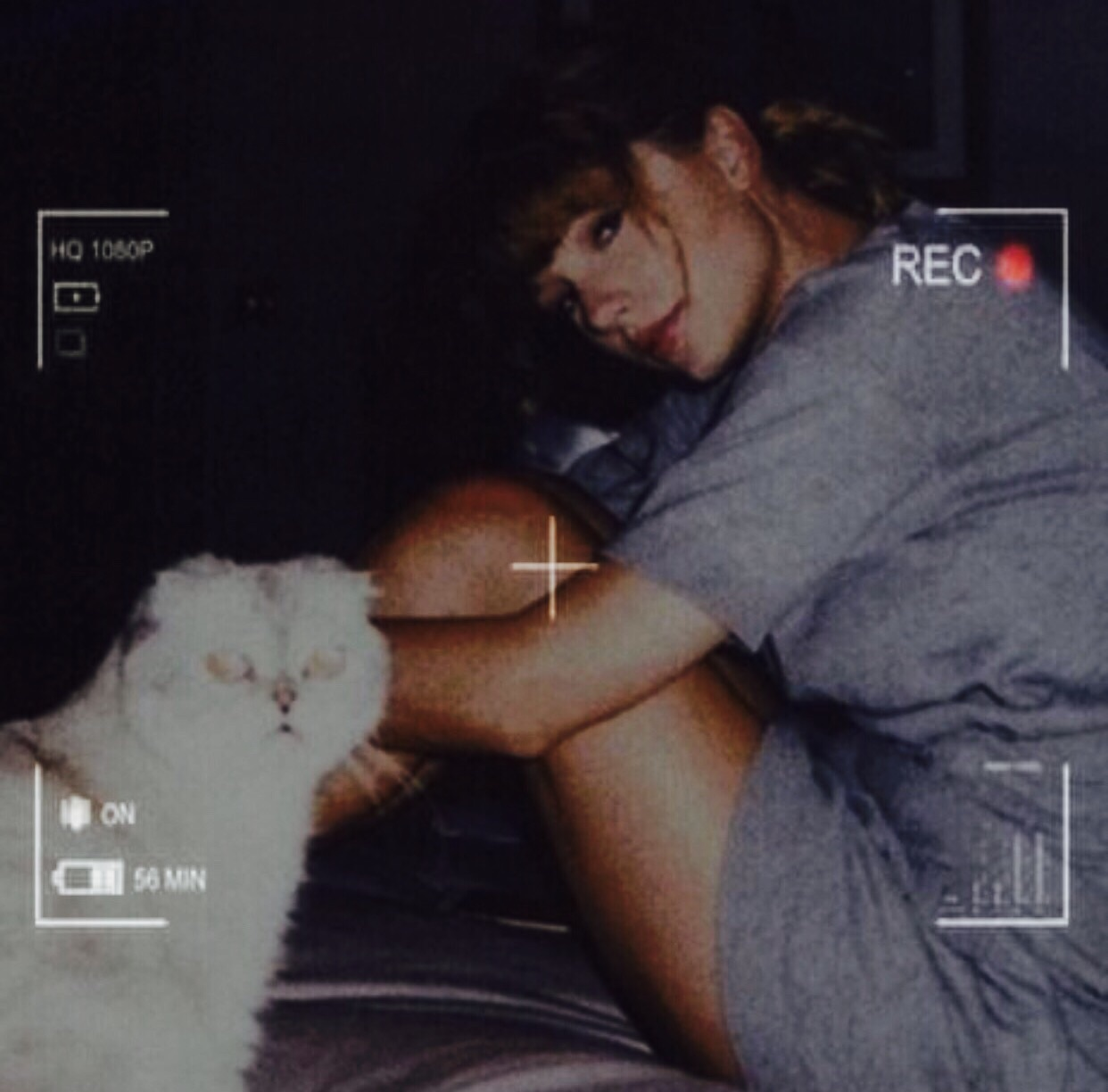 heart, Taylor Swift and cat