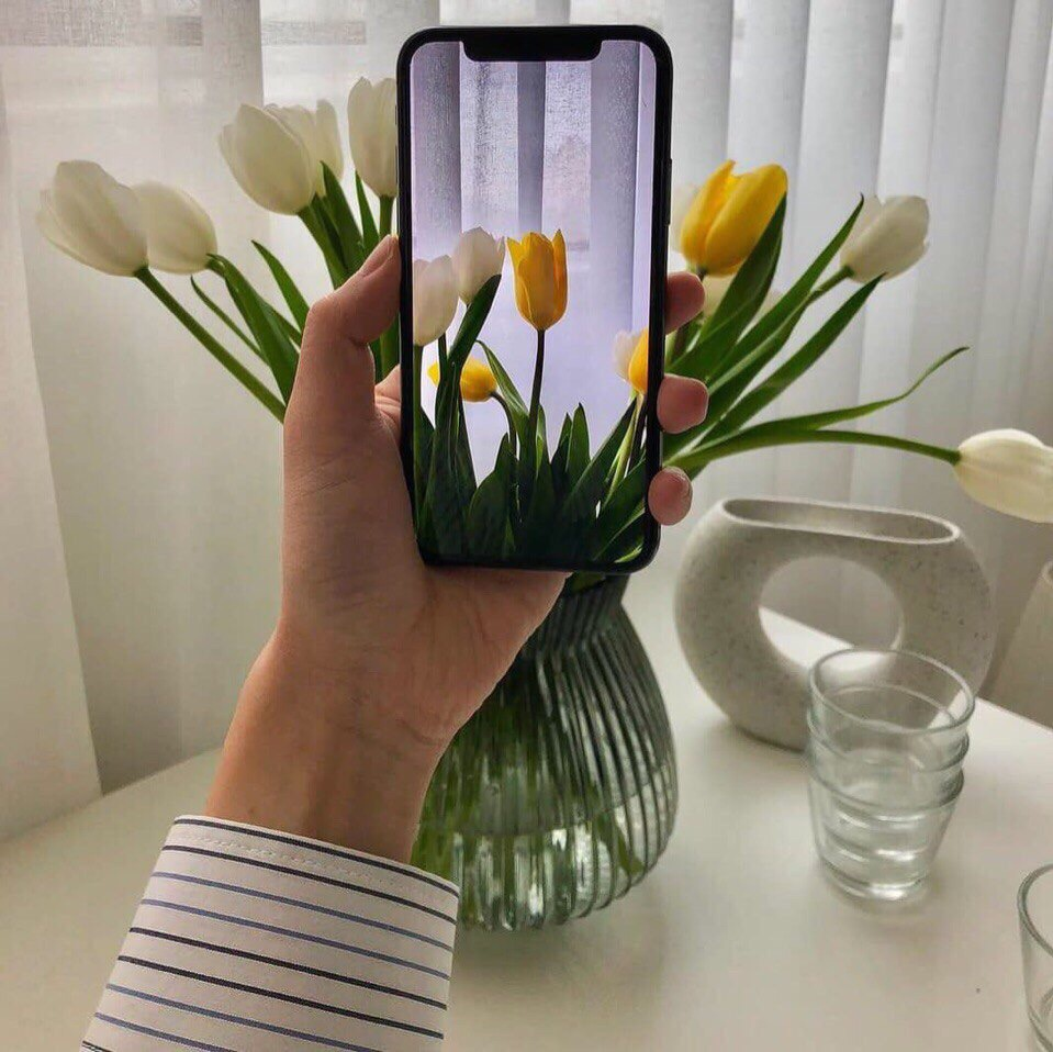iphone x, flowers, spring and iphone photography
