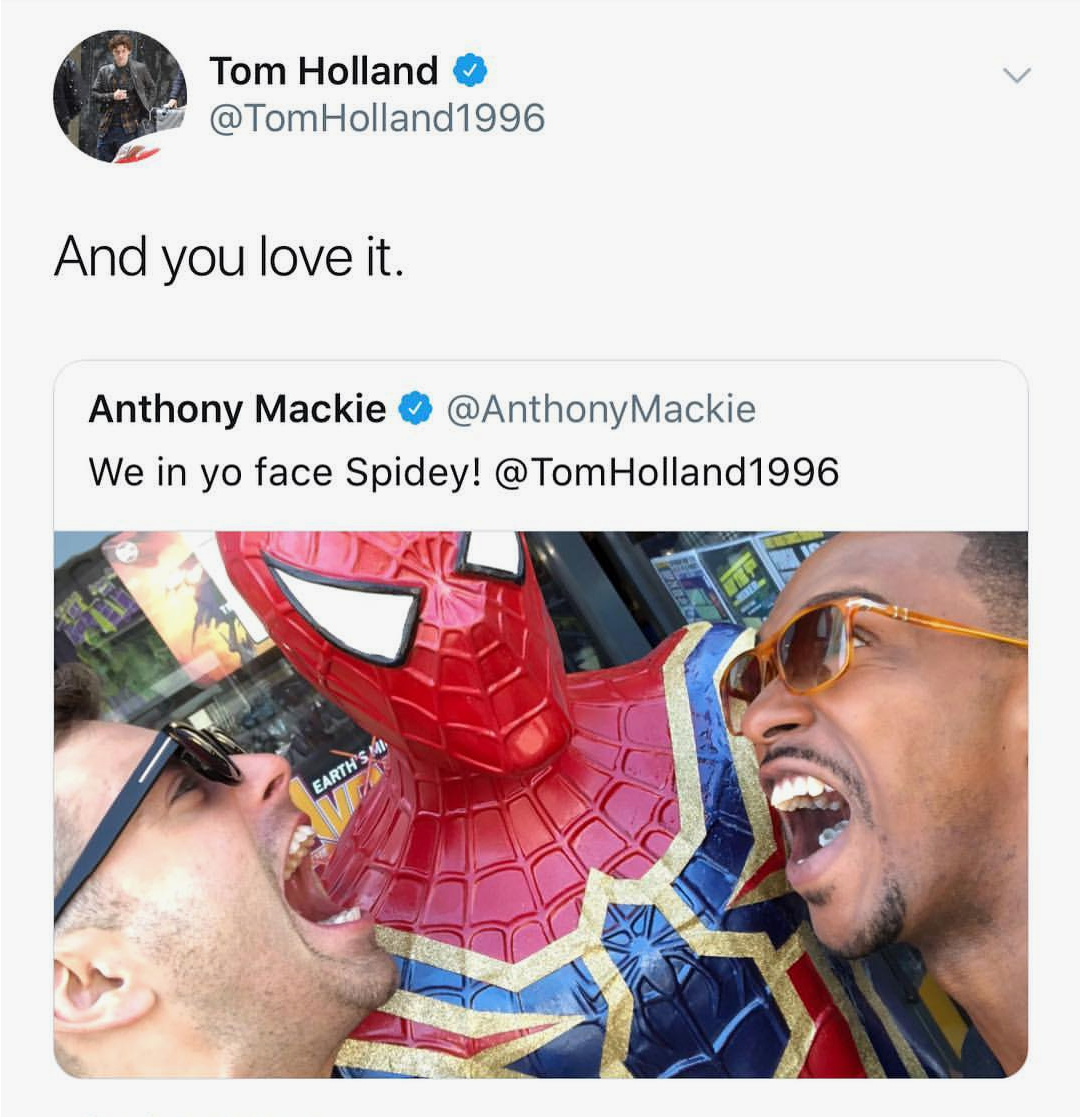 falcon, twitter, tom holland and actor