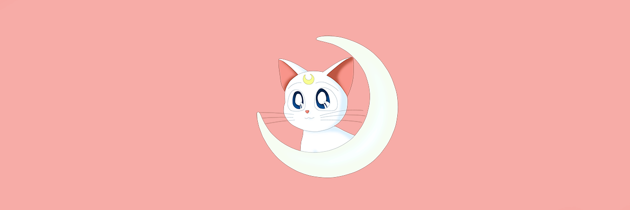 header, cat, aesthetic and sailor venus