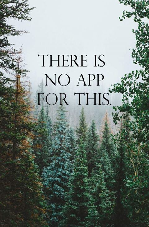 nature, app and forest