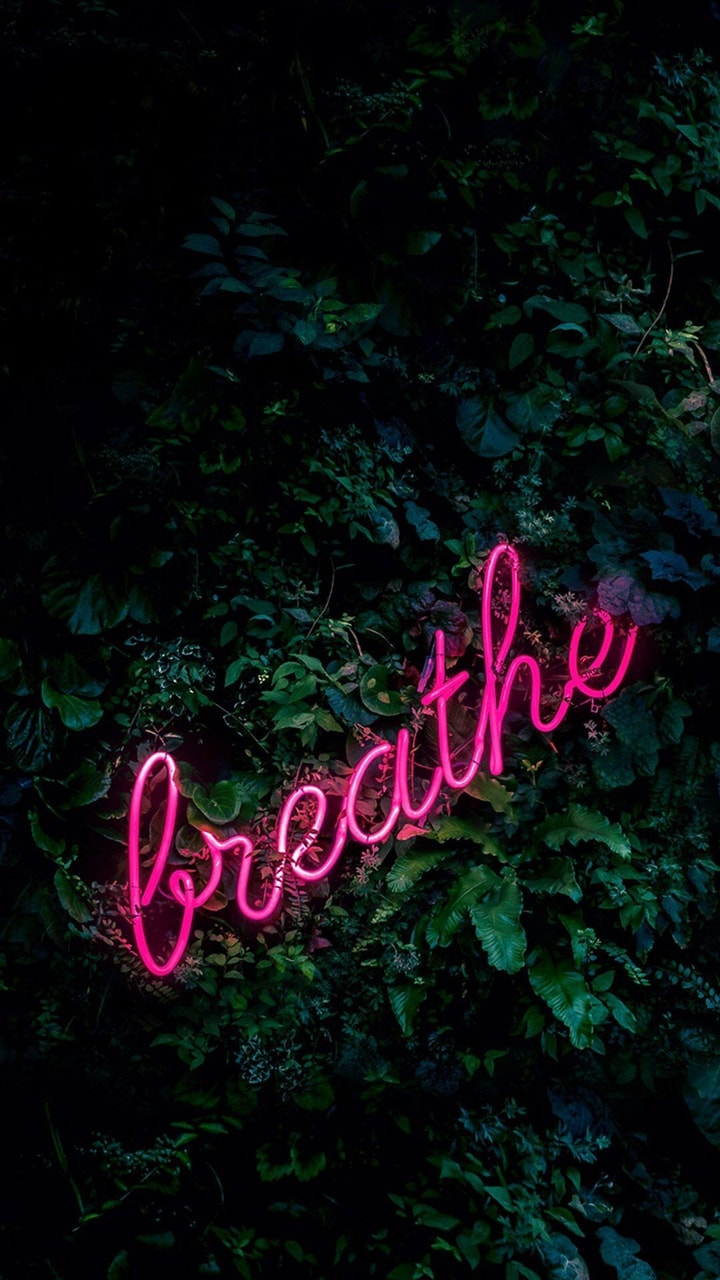stop, neon, relax and breathe