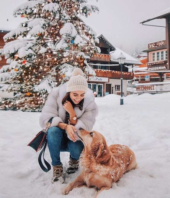 cold, dog, winter and christmas