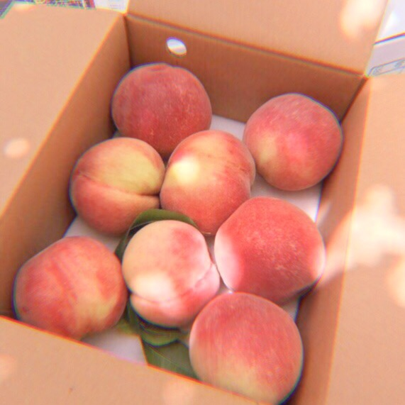 aesthetic, fruit, peach and peaches