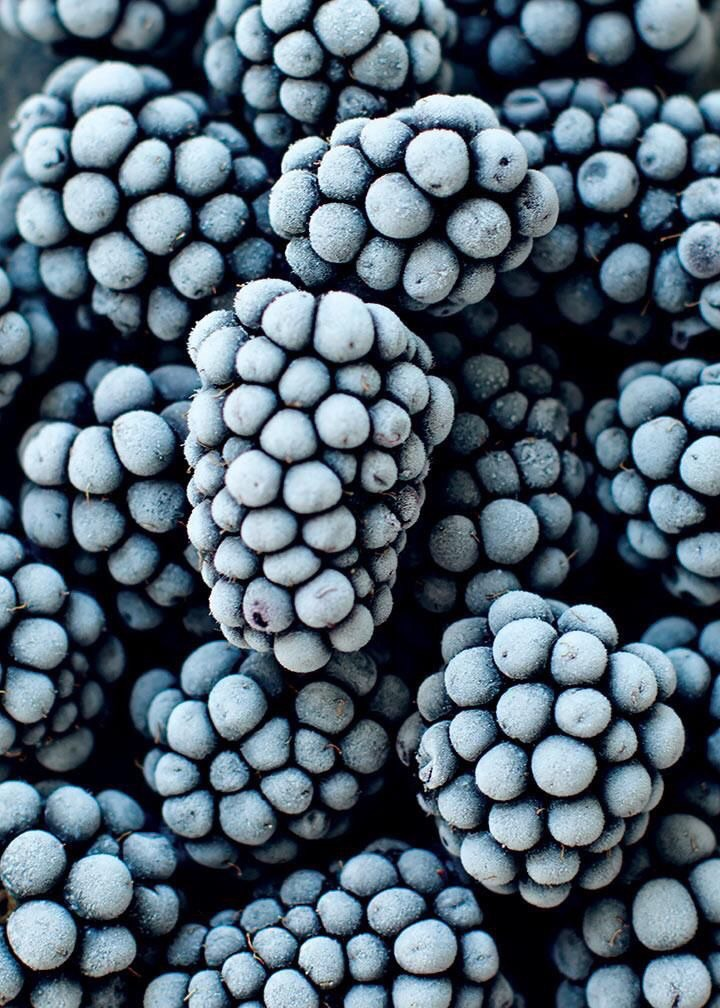 blue, delicious, fruit and healthy