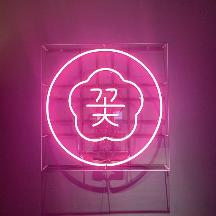 aesthetic, artistic, neon and pink