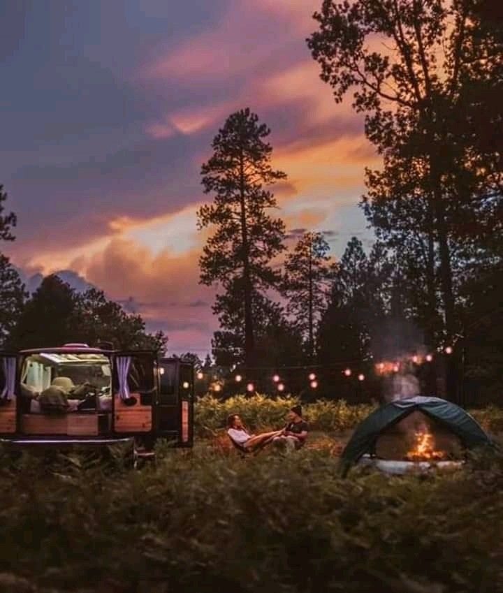 aesthetic, camping, couple and forest