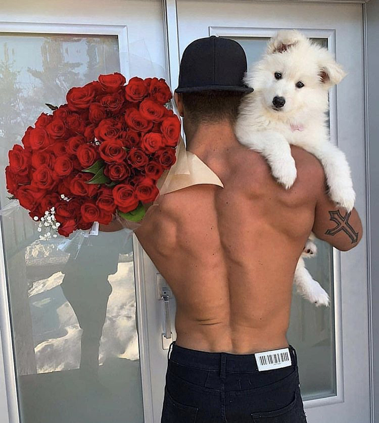 muscles, roses, male and tumblr