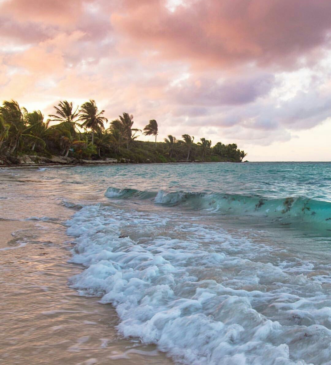 tropical, views, lifestyle and sunset