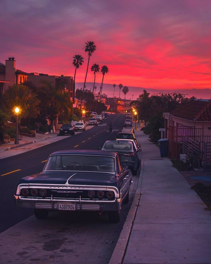 palm tree, cars, road and pink