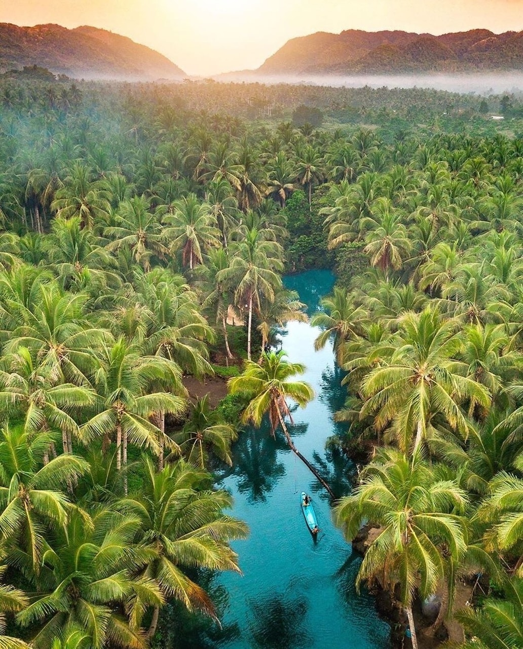 Philippines, palms, happiness and calming