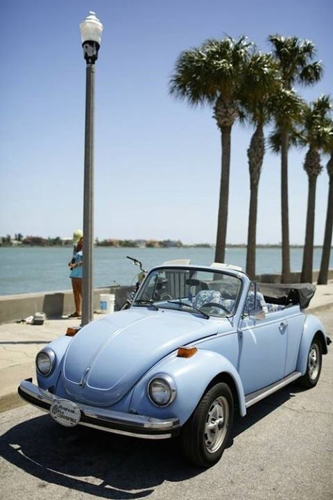 palm trees, Dream, volkswagen and babyblue