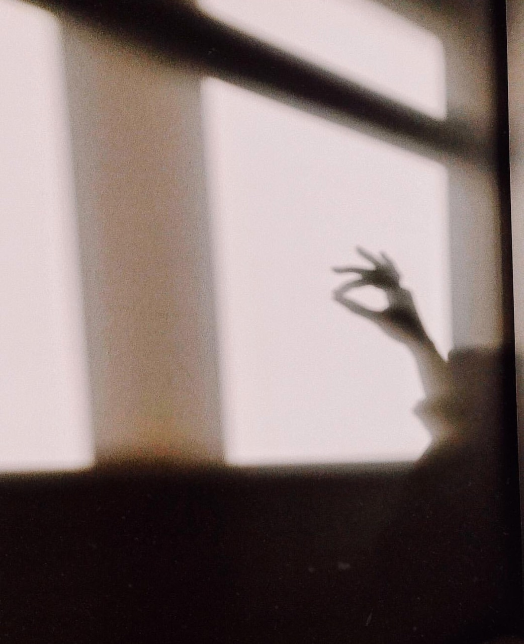 writersofwhi, whithecollectors, photography and shadow
