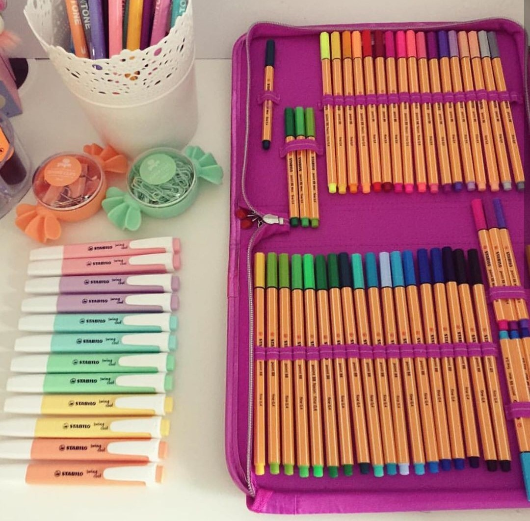 school supplies, study, drawing and pencil case