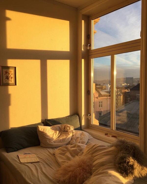 aesthetic, golden hour, home and sunshine
