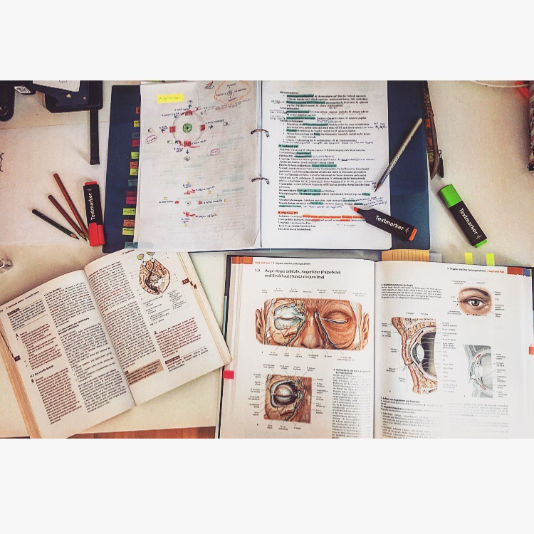 studying, love, motivation and asthetic