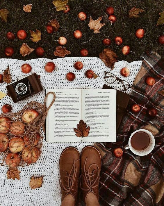 coffee, morning, autumn and colour