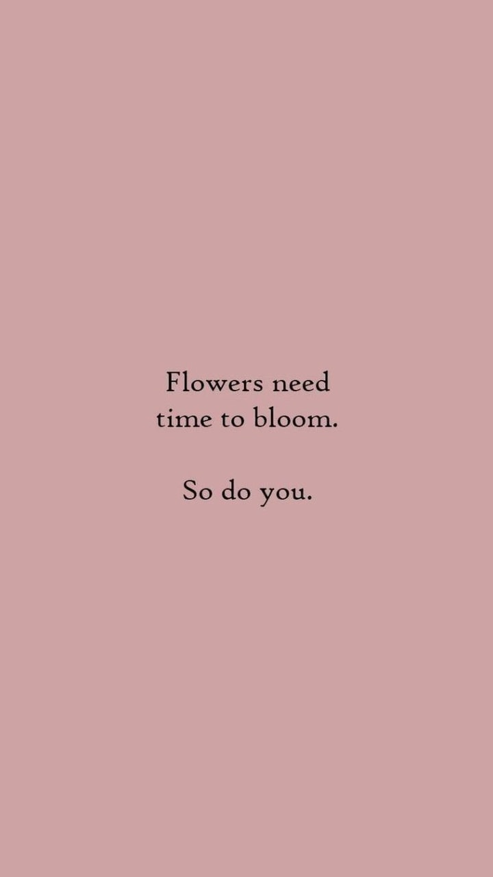 bloom, flower, words and flowers