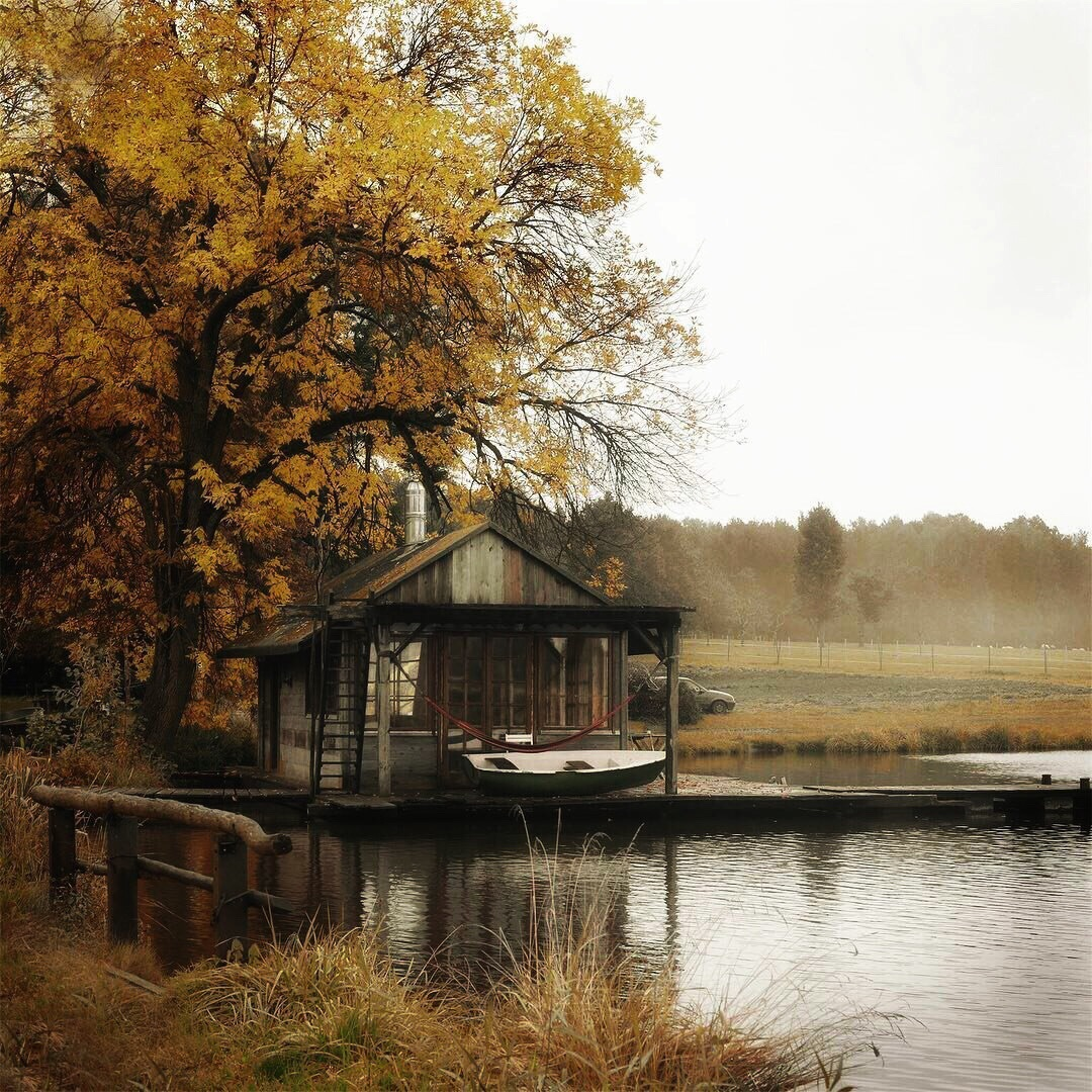 autumn, fall, home and nature