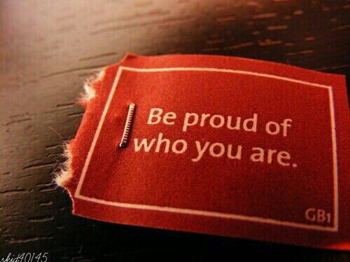 be proud of who you are, red, gryffindor and lion
