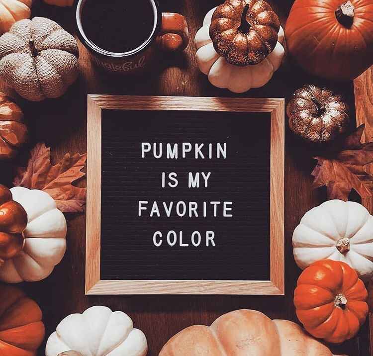 quotes, pumpkin, text and coffee