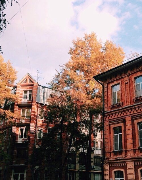 fall, buildings, city and brown