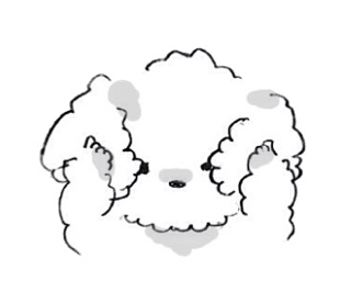 poodles, transparent, stickers and puppies